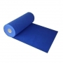 Sinine vaip 1 m²